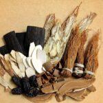 Ho Shou Wu : la plante chinoise pour lutter contre les cheveux gris